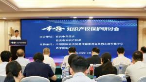 """""""一带一路""""知识产权保护研讨会在西安举办"""
