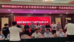 中国(西安)知识产权保护中心朱平当选陕西好商标评审专家